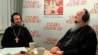 Радио «Радонеж». Протоиерей Димитрий Смирнов. Видеозапись прямого эфира от 2017.04.29