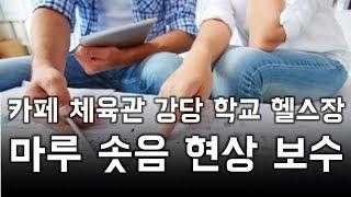 체육관 카페 강당 학교 원목마루 솟음 현상 보수
