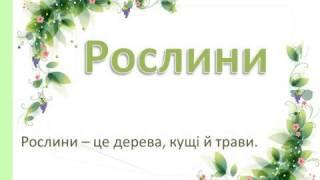 """Презентація для уроку розвитку мовлення """"Рослини"""""""