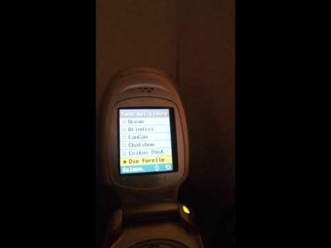 Samsung T100 ringtones