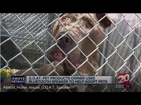 Almost Home Animal Shelter and G.O.A.T. Pet Products!