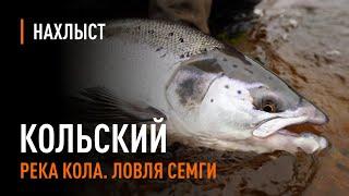 Ловля СЕМГИ в середине сезона, река КОЛА / Atlantic Salmon Fly Fishing Mid-season Of Kola River.