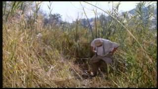 Yankee zulu 1993 (1) funny movie
