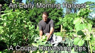 A Couple Harvesting Tips: An E…