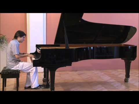 Nikola Scepovic - Fazil Say: Summertime Variations