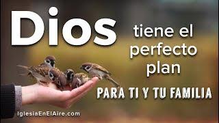 Los planes de Dios siempre son mejores que los nuestros | Palabra de Vida