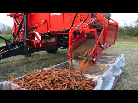 Download Youtube: Carrot harvester DEWULF GBC with John Deere 5820 tractor - Andershornstein AB Sweden