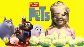 Найди героя из Мультфильма Тайная жизнь домашних животных!