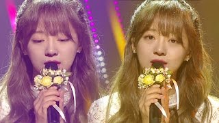《MOURNFUL》 SEJEONG(gugudan) (세정(구구단)) - Flower way (꽃길) @인기가요 Inkigayo 20161211