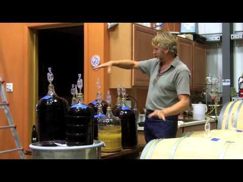 Natural Winemaking