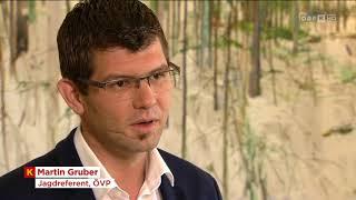 Änderung des Kärntner Jagdgesetzes ORF Kärnten heute