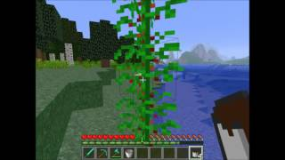 planetoids minecraft 1-3 2-4 betting system
