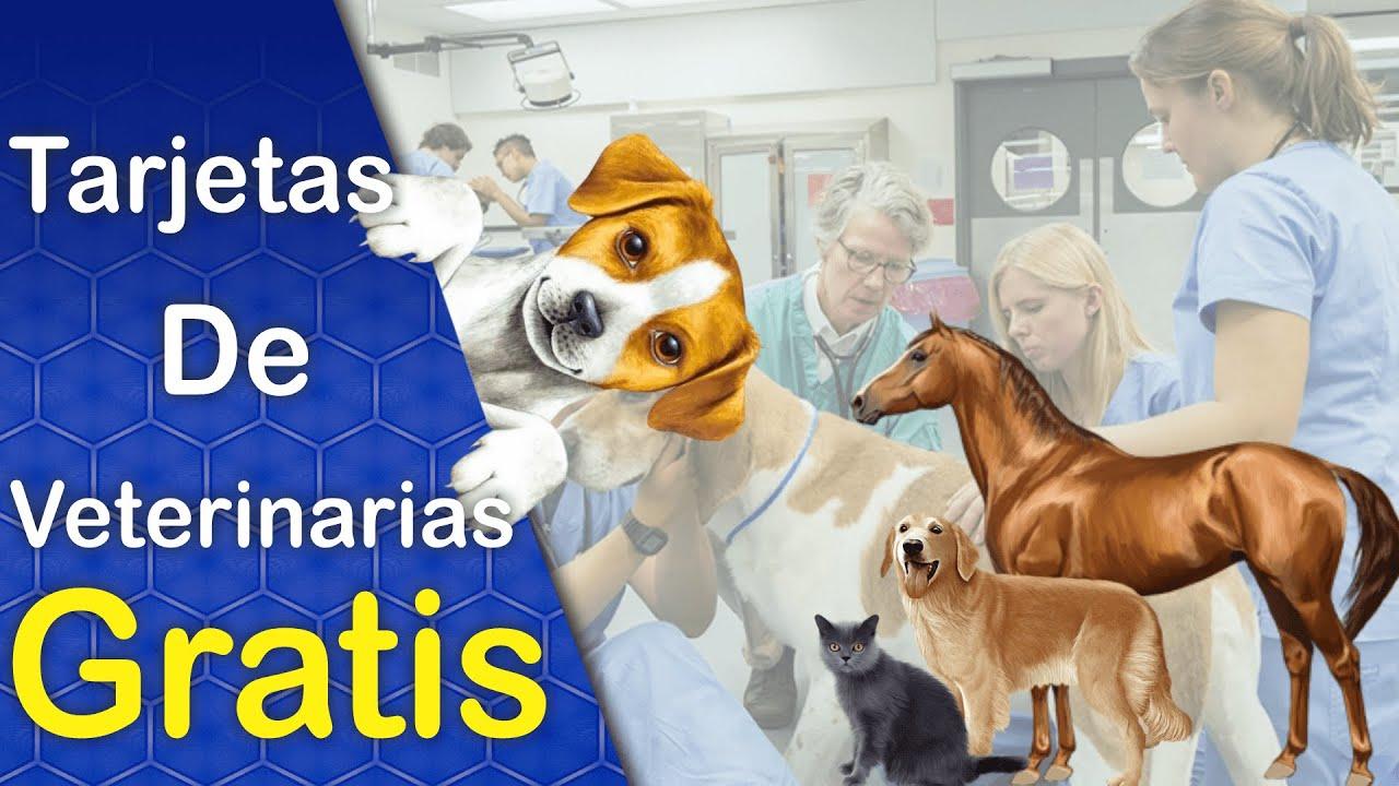 Disenos De Tarjetas De Presentacion Para Veterinarias Descarga