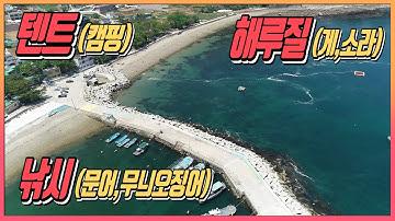 낚시와 해루질, 캠핑이 한곳에서 가능한 남해포인트 소개 [Korea
