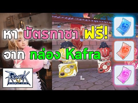 หา บัตรกาชา ฟรี! จากกล่อง Kafra ครับ   Ragnarok M Eternal Love (RO M)