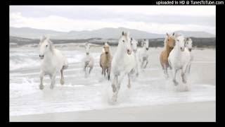 Dino Lenny - White Horses (Zeff Dub)