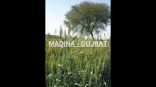 Crazy Productions - Gujrat Trip Pakistan Travel Log 2 Travel Video