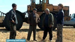 Чечевица спасет единственный на всю страну колхоз