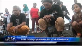 BWI-TV Pelepasan Tukik - 31 Mei 2015