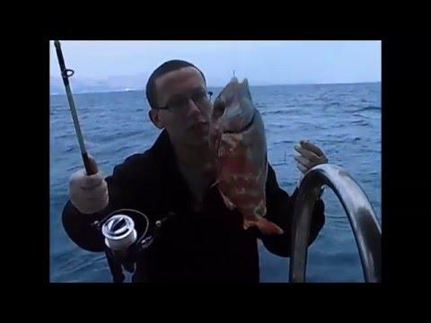 Ege Balık Avı Fangri Mercan Avı