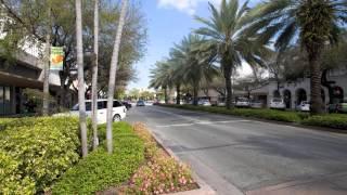 Big Bus Miami long Video