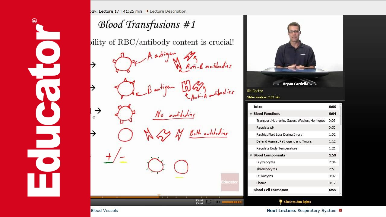 Blood Anatomy and Physiology - YouTube