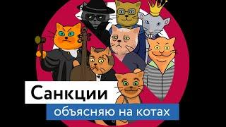 Санкции: объясняю на котах | Коты Ходорковского