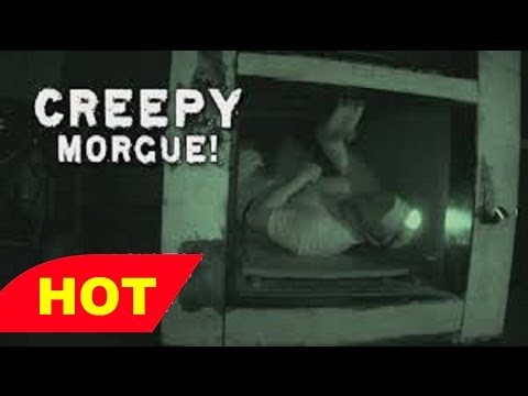 The Morgue   What happens to our bodies after death Full Documentary