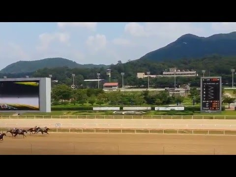 Seoul Race course, South Korea