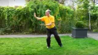 Tai Chi Form of Master Moy