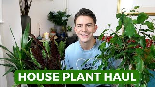 HOUSE PLANT HAUL | LARGE INDOOR HOUSE PLANTS 2018