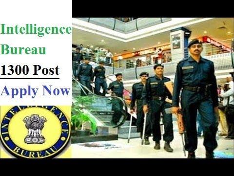 Intelligence Bureau Recruitment 2017    1300 Vacancy   Apply Online Now   govt jobs 2017