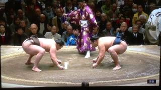 January 2014 - Day 15 - PLAYOFF!!  - Hakuho v Kakuryu
