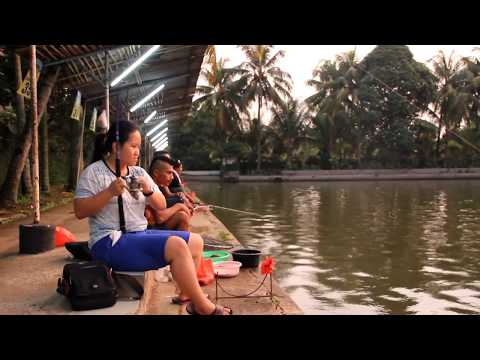 Fish On Patin Jakarta Fishing Challenge Pemancingan Tambok lobu