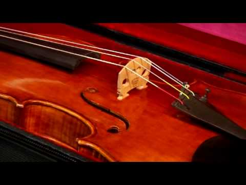 Violins & Orchestra Instruments : Review of Violin Cases