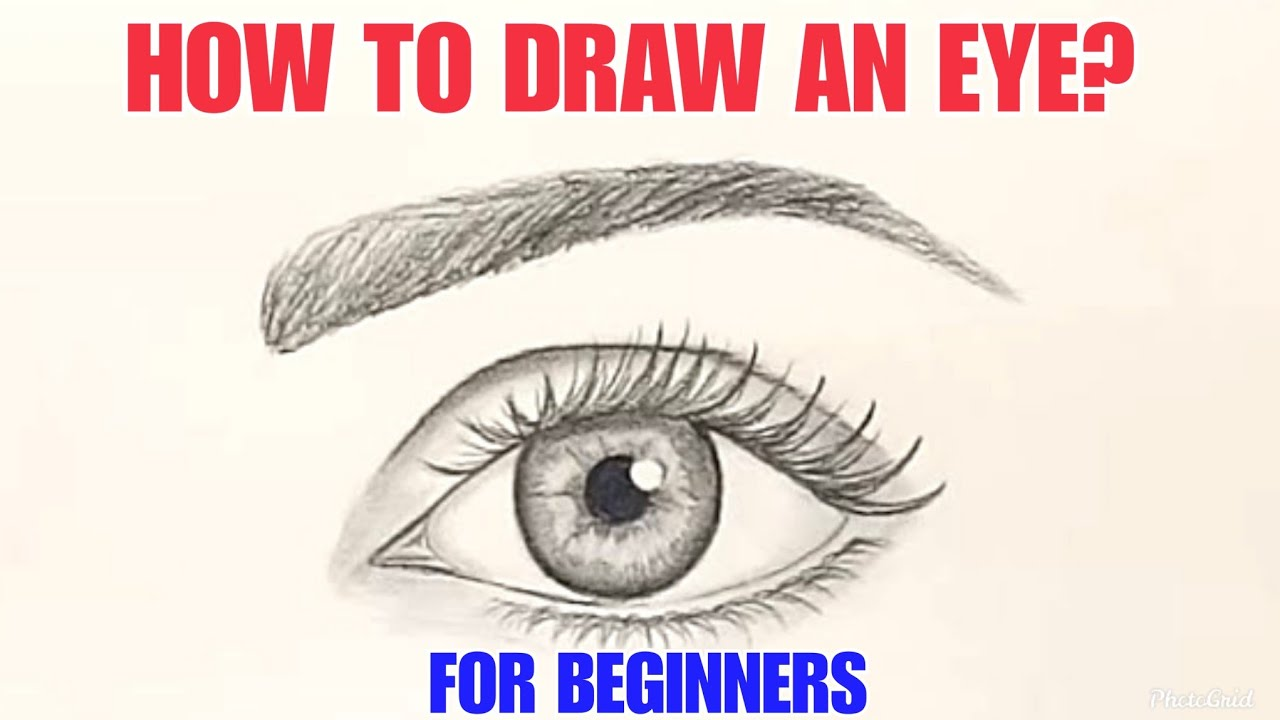 How to draw Eyes | Eyebrows | Eyelashes | Step by Step ...