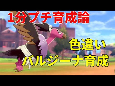 イカサマ ポケモン 剣 盾