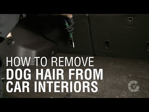 how to remove dog hair from car interiors autoblog details youtube. Black Bedroom Furniture Sets. Home Design Ideas