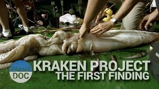 kraken project the first finding   nature planet doc full documentaries