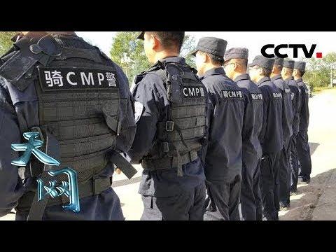 《天网》雪域寻踪:雪豹遭非法捕猎 森林公安涉险高原雪域打击犯罪   CCTV社会与法