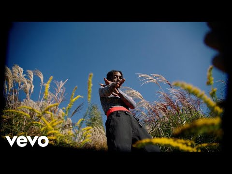 Flohio - Wild Yout (Official Video) Mp3