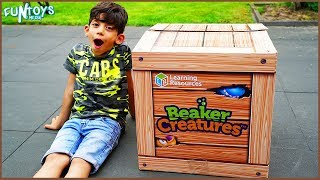 Primary Science Experiment for Kids from Beaker Creatures