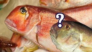 옥돔의 두얼굴, 옥돔을 사칭하는 이 생선의 정체 그리고…