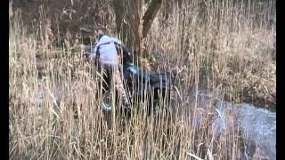 Kazuma Jaguar 500 bez předního kardanu zapadla v mokřinách