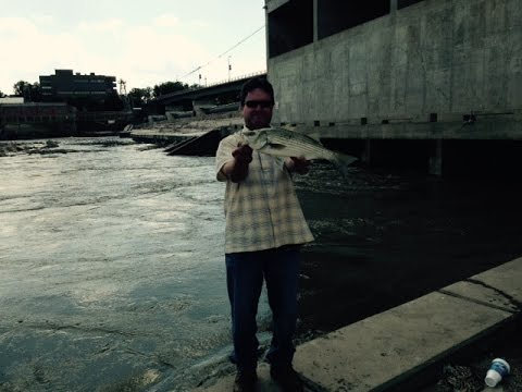 Street Fishing - Lawrence KS USA // Wiper White