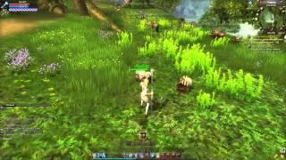 World of Dragons  Частный обзор