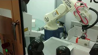 Robotin salainen elämä