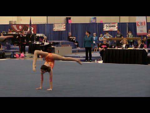 national level 10 gymnastics meet