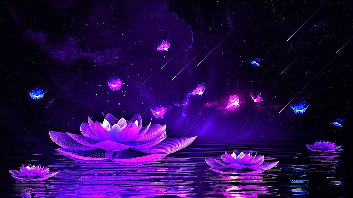 Permanent Link to Peaceful Night ? Soothing Deep Sleep Music   528Hz Calming Sleeping Music   Healing Sleep Meditation