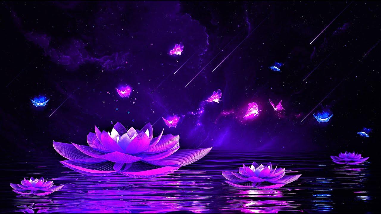 Download Peaceful Night 💜 Soothing Deep Sleep Music   528Hz Calming Sleeping Music   Healing Sleep Meditation